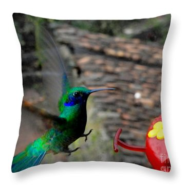 Landing Gear Down Throw Pillow by Al Bourassa