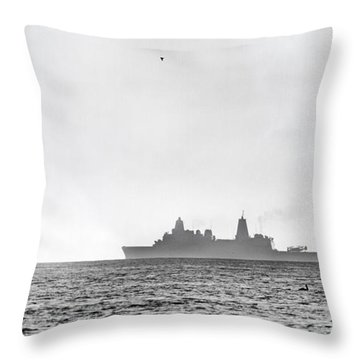 Landing On The Horizon Throw Pillow by Betsy Knapp