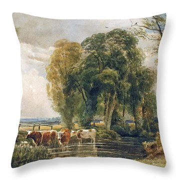 Landscape Cattle In A Stream With Sluice Gate Throw Pillow by Peter de Wint