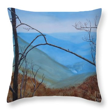 Lane Pinnacle Throw Pillow by Stuart Engel