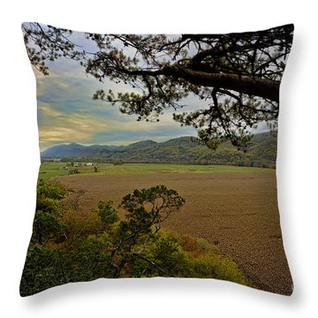 Large Cornfield In Valley Throw Pillow by Dan Friend