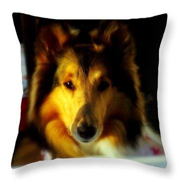 Lassie Come Home Throw Pillow by Karen Wiles