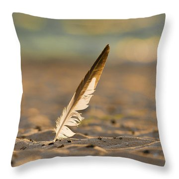 Last Days Of Summer Throw Pillow by Sebastian Musial