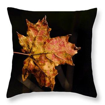 Last Maple Leaf Throw Pillow by LeeAnn McLaneGoetz McLaneGoetzStudioLLCcom