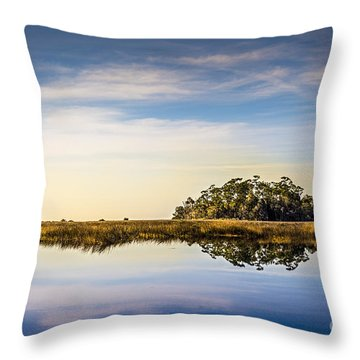 Late Day Hammock Throw Pillow by Marvin Spates