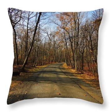 Late Fall At Cheesequake State Park Throw Pillow by Raymond Salani III