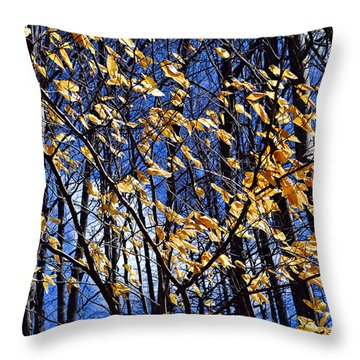Late Fall Throw Pillow by Elena Elisseeva