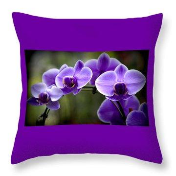 Lavender Rainbow Throw Pillow by Karen Wiles