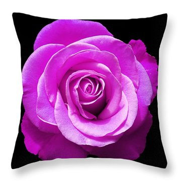 Lavender Rose Throw Pillow by Aimee L Maher Photography and Art Visit ALMGallerydotcom