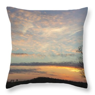 Lazy Day Throw Pillow by Michael Waters