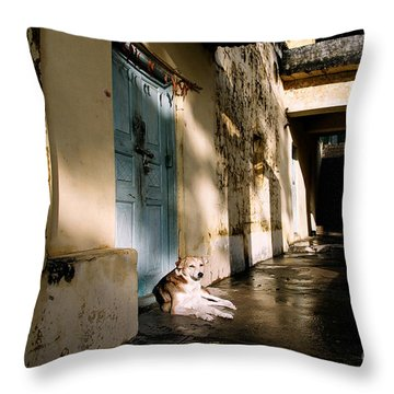Lazy Dog Resting In The Afternoon Throw Pillow by Eldad Carin