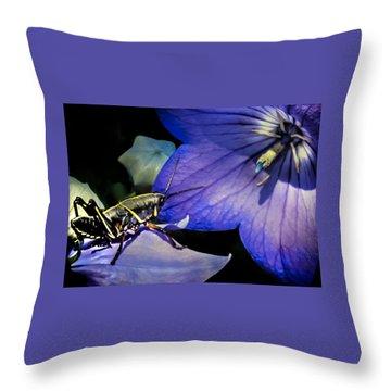 Contemplation Of A Pistil Throw Pillow by Karen Wiles