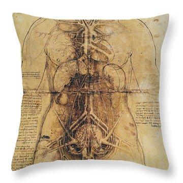 Leonardo: Anatomy, C1510 Throw Pillow by Granger