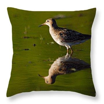 Lesser Yellowlegs Throw Pillow by Larry Ricker