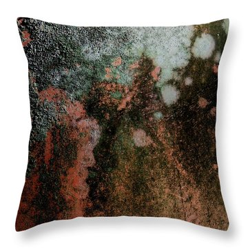 Lichen Abstract 2 Throw Pillow by Denise Clark