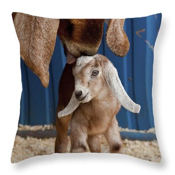 Licked Clean Throw Pillow by Caitlyn  Grasso