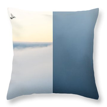 Light And Dark Throw Pillow by Lisa Knechtel