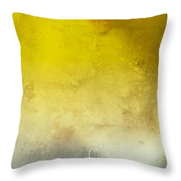 Light Throw Pillow by Peter Tellone