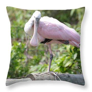 Light Pink Roseate Spoonbill Throw Pillow by Carol Groenen