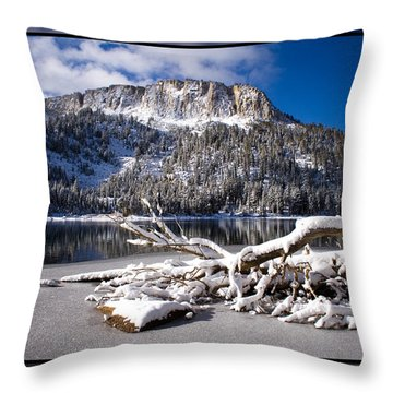 Lightly Powdered 2 Throw Pillow by Chris Brannen