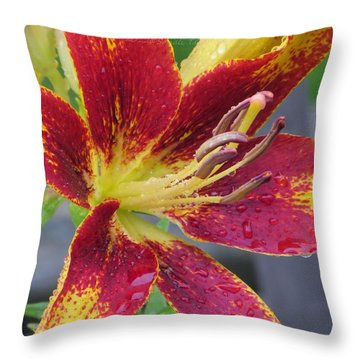 Lily In My Patio Throw Pillow by Sonali Gangane
