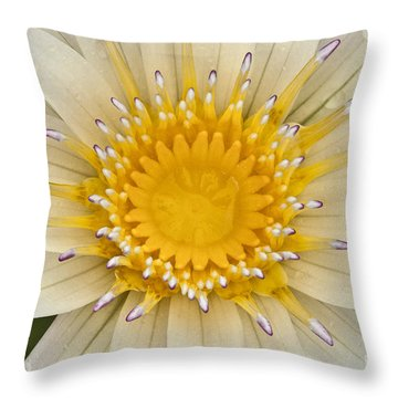 Lily Of The Lake Throw Pillow by Heiko Koehrer-Wagner
