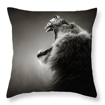 Lion Displaying Dangerous Teeth Throw Pillow by Johan Swanepoel