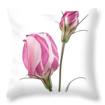 Lisianthus Love 2 Throw Pillow by Ann Garrett