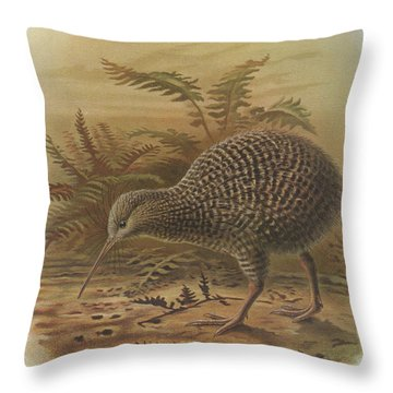Little Spotted Kiwi Throw Pillow by J G Keulemans