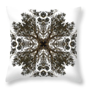 Live Oak Lace Throw Pillow by Debra and Dave Vanderlaan