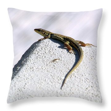 Lizard Throw Pillow by Ramona Matei