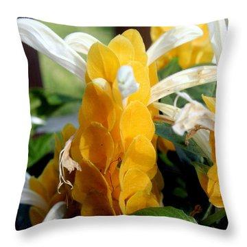 Lollipop Plant  Throw Pillow by Kathy  White
