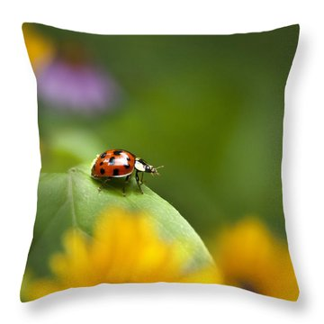 Lonely Ladybug Throw Pillow by Christina Rollo