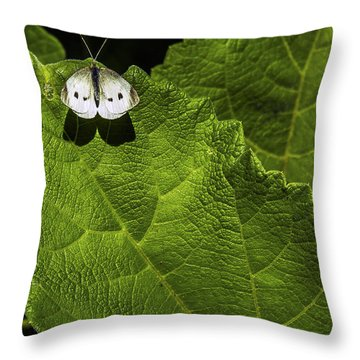 Lonely On A Leaf Throw Pillow by Tim Buisman