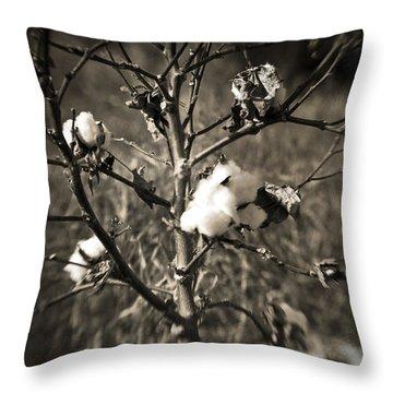 Lonesome Throw Pillow by Scott Pellegrin