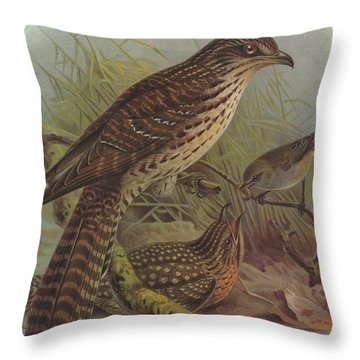 Long Tailed Cuckoo And Grey Warbler Throw Pillow by J G Keulemans