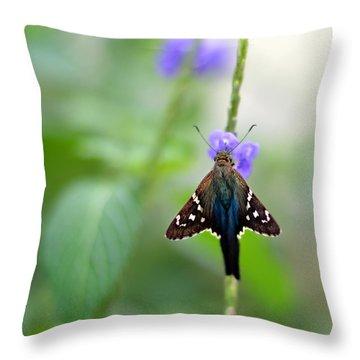 Long Tailed Skipper Throw Pillow by Laura Fasulo