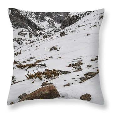 Longs Peak -  Vertical Throw Pillow by Aaron Spong