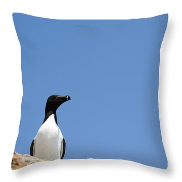 Look At Me Throw Pillow by Anne Gilbert