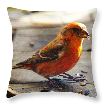 Look - I'm A Crossbill Throw Pillow by Robert L Jackson
