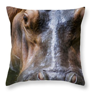 Look Me In The Eyes Throw Pillow by Aged Pixel