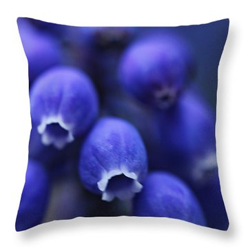 Looking Dun   Throw Pillow by Mark Ashkenazi