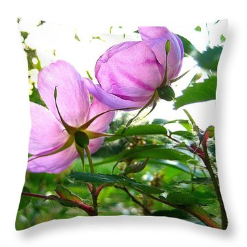 Looking Forward Throw Pillow by Shirley Sirois