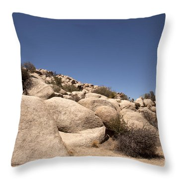 Looks Like It Was Planned Throw Pillow by Amanda Barcon