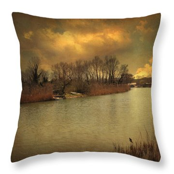 Lost In Life Throw Pillow by Taylan Soyturk