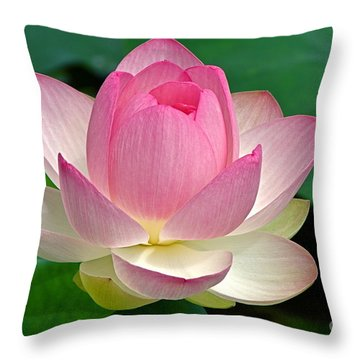 Lotus 7152010 Throw Pillow by Byron Varvarigos