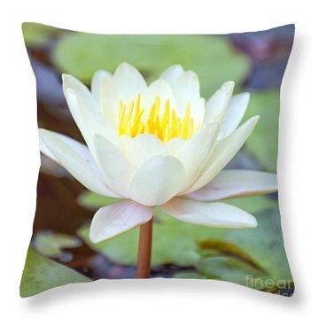 Lotus Flower 02 Throw Pillow by Antony McAulay