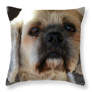 Louie Throw Pillow by Dale   Ford