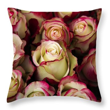 Love Is A Rose IIi Throw Pillow by Al Bourassa