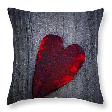 Love Throw Pillow by Svetlana Sewell
